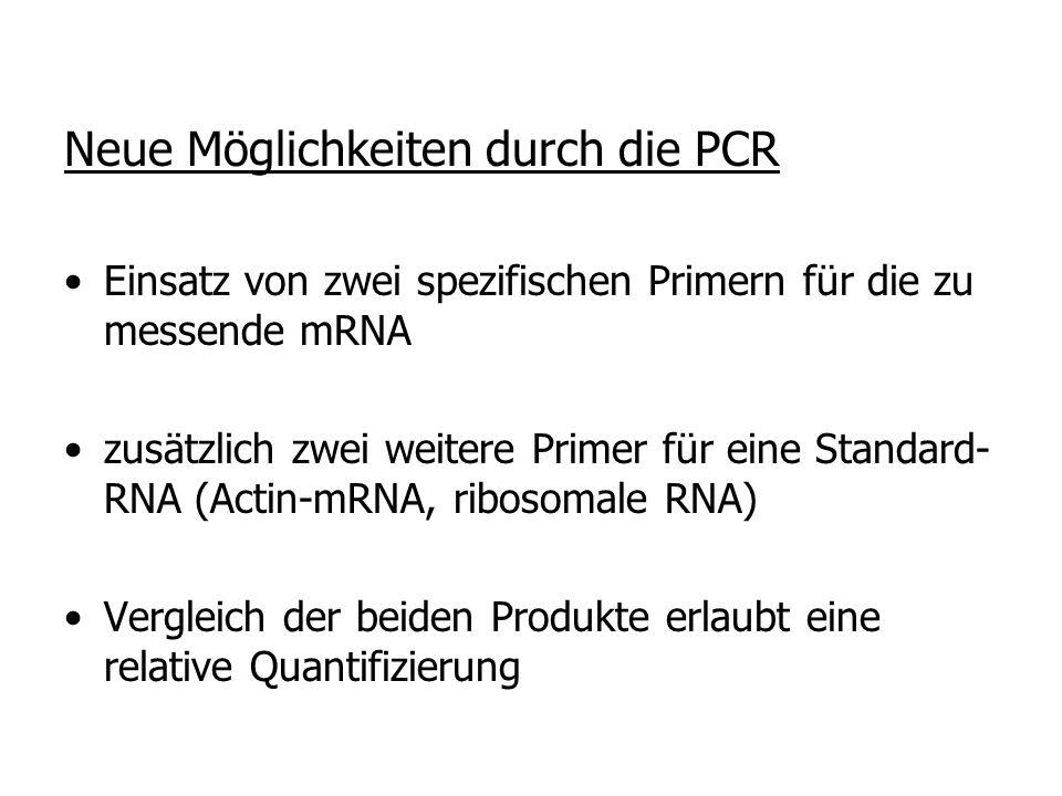 Neue Möglichkeiten durch die PCR