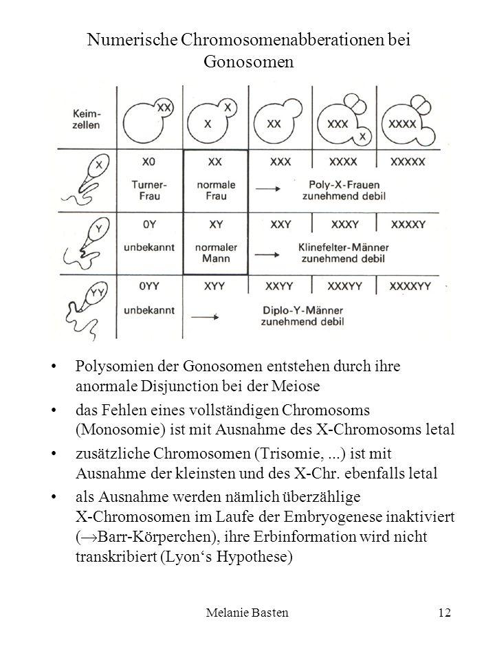 Numerische Chromosomenabberationen bei Gonosomen