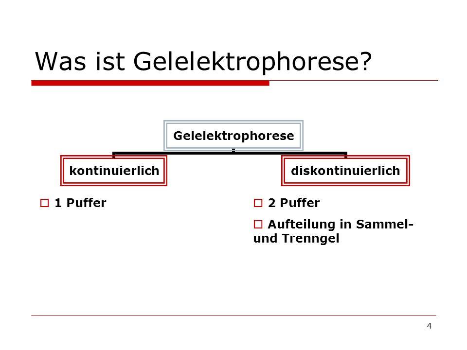 Was ist Gelelektrophorese