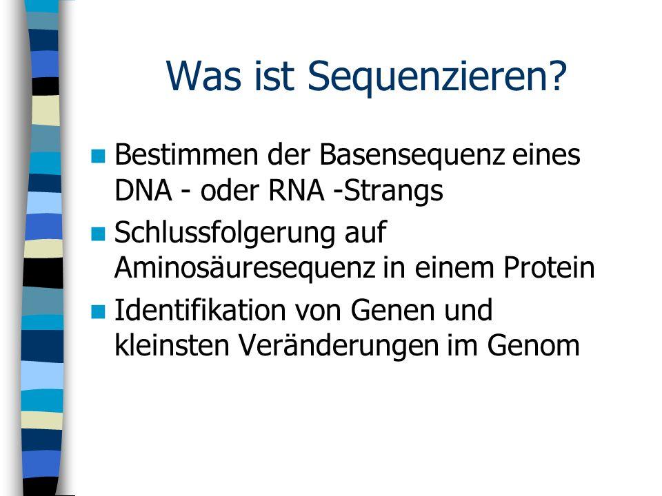 Was ist Sequenzieren Bestimmen der Basensequenz eines DNA - oder RNA -Strangs. Schlussfolgerung auf Aminosäuresequenz in einem Protein.