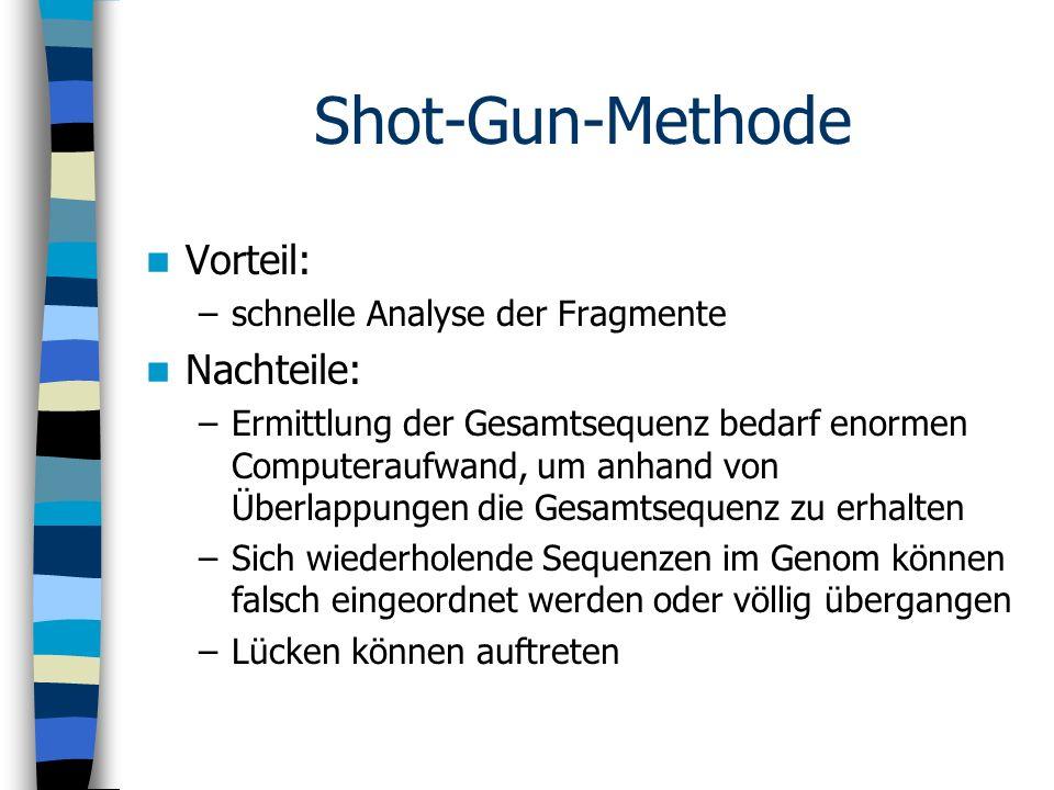 Shot-Gun-Methode Vorteil: Nachteile: schnelle Analyse der Fragmente