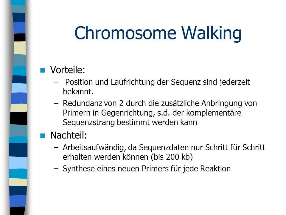Chromosome Walking Vorteile: Nachteil: