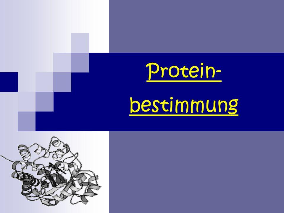 Protein- bestimmung