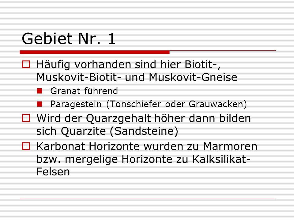 Gebiet Nr. 1 Häufig vorhanden sind hier Biotit-, Muskovit-Biotit- und Muskovit-Gneise. Granat führend.
