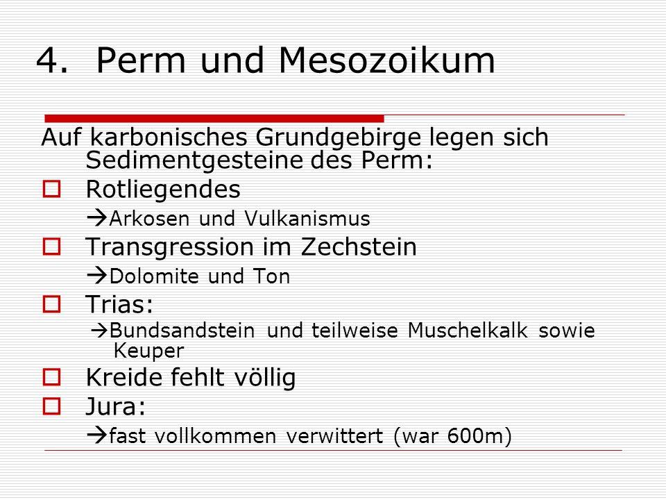 4. Perm und Mesozoikum Auf karbonisches Grundgebirge legen sich Sedimentgesteine des Perm: Rotliegendes.