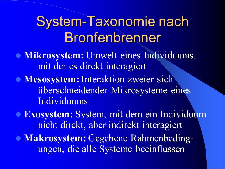 System-Taxonomie nach Bronfenbrenner