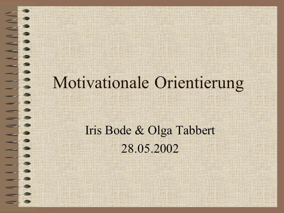 Motivationale Orientierung
