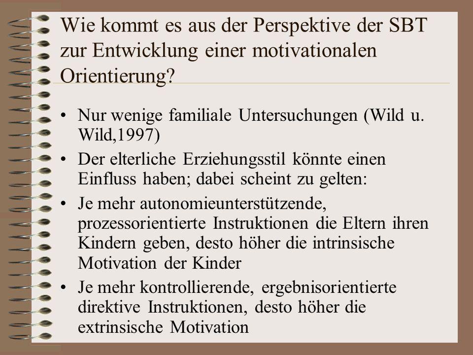 Wie kommt es aus der Perspektive der SBT zur Entwicklung einer motivationalen Orientierung