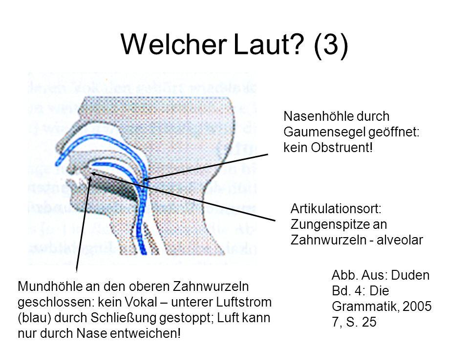 Welcher Laut (3) Nasenhöhle durch Gaumensegel geöffnet: kein Obstruent! Artikulationsort: Zungenspitze an Zahnwurzeln - alveolar.