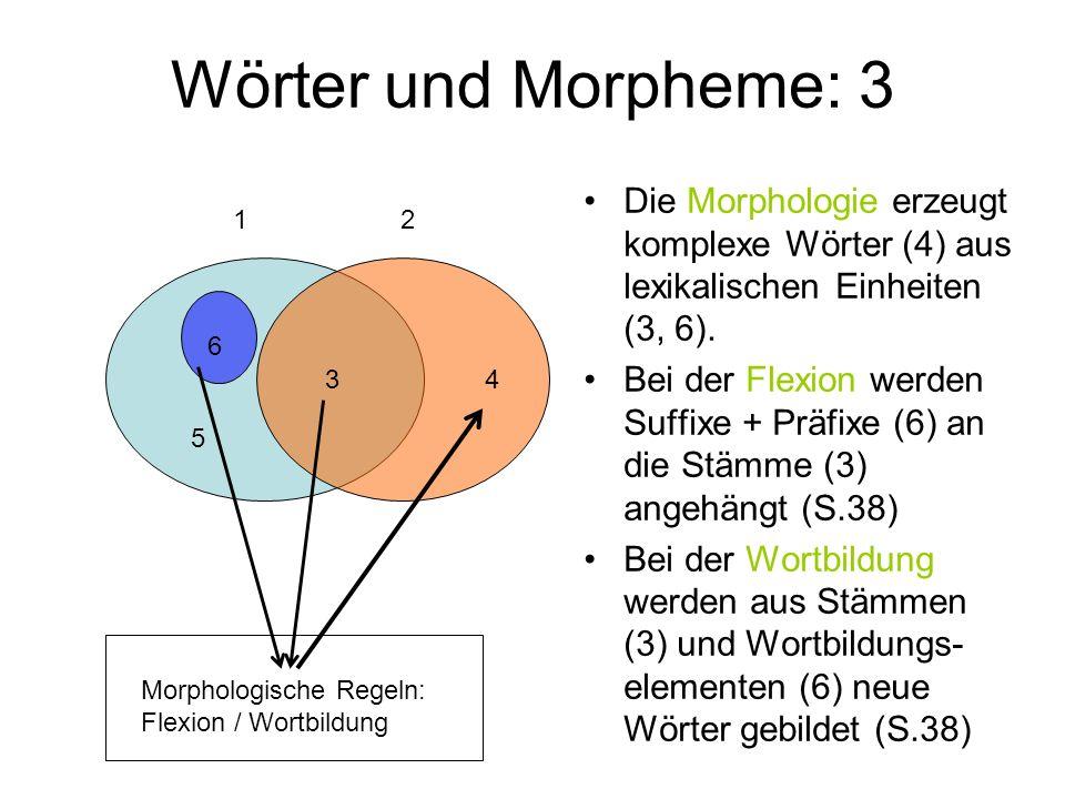 Wörter und Morpheme: 3 Die Morphologie erzeugt komplexe Wörter (4) aus lexikalischen Einheiten (3, 6).