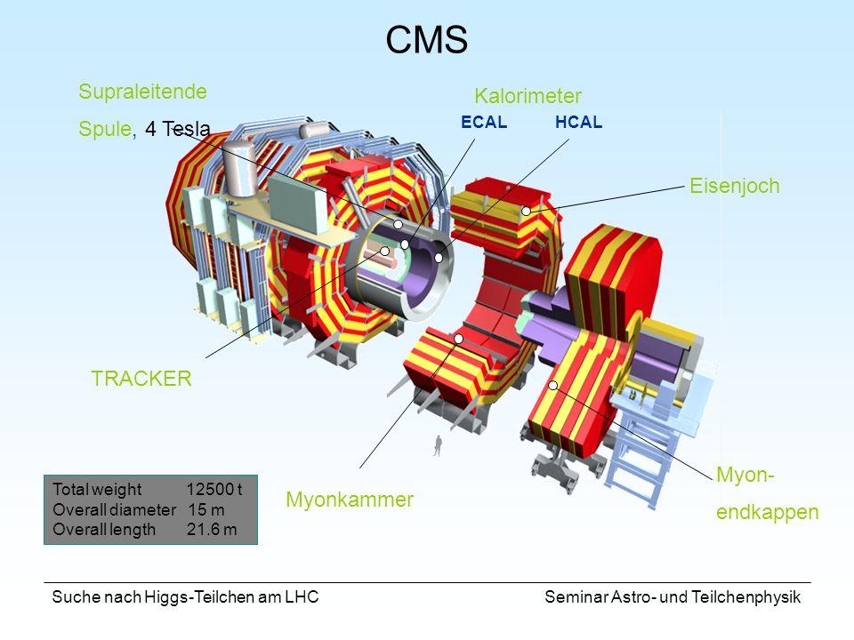 CMS Kalorimeter Supraleitende Spule, 4 Tesla Eisenjoch TRACKER Myon-