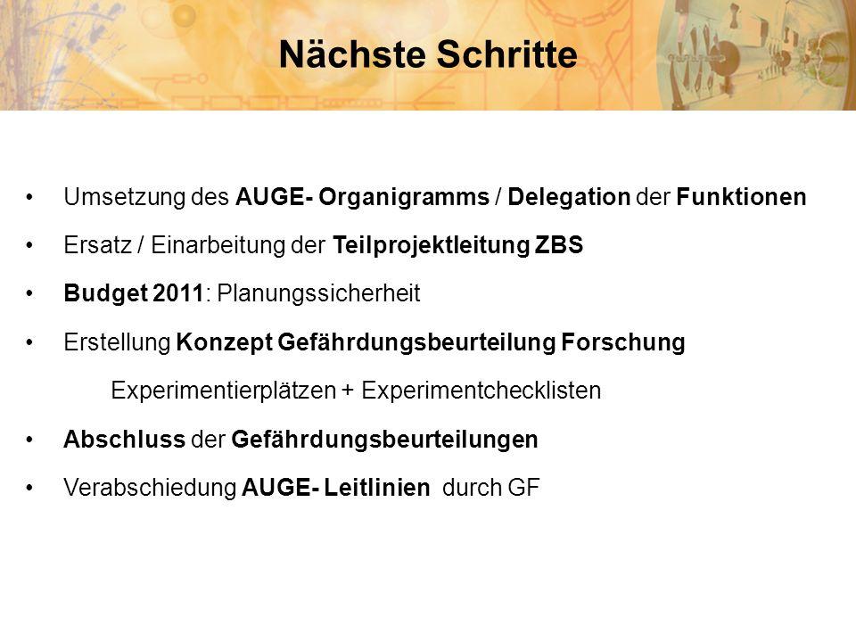 Nächste Schritte Umsetzung des AUGE- Organigramms / Delegation der Funktionen. Ersatz / Einarbeitung der Teilprojektleitung ZBS.