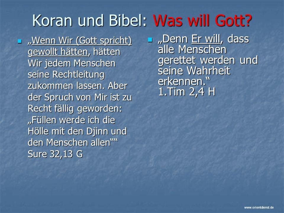 Koran und Bibel: Was will Gott