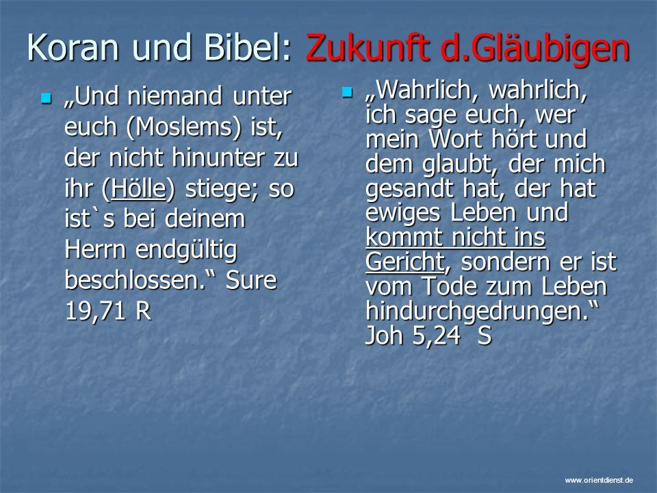Koran und Bibel: Zukunft d.Gläubigen