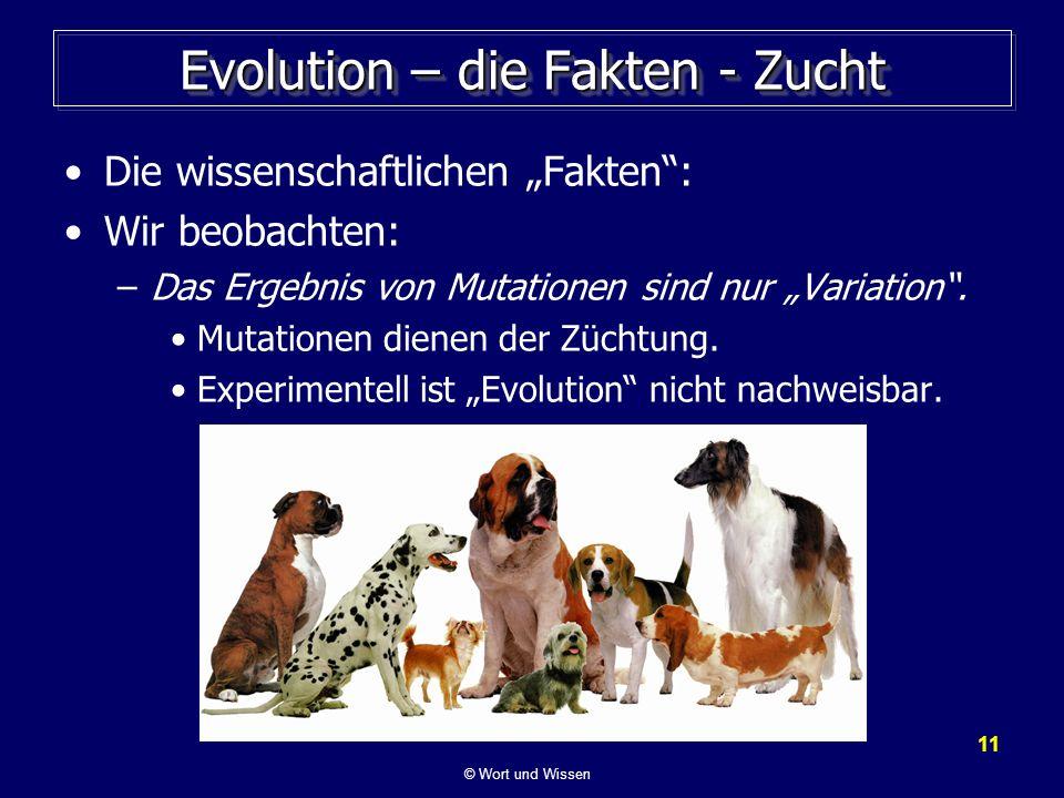 Evolution – die Fakten - Zucht