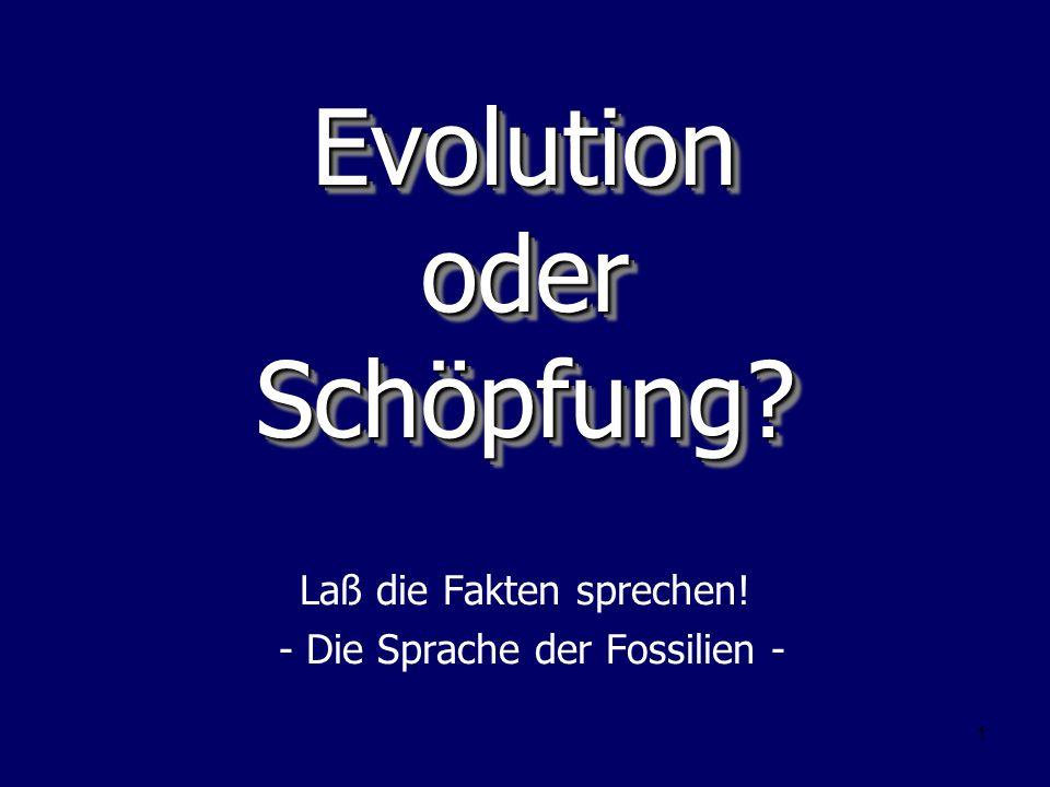 Evolution oder Schöpfung