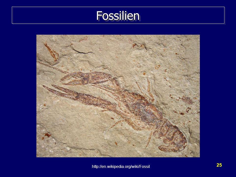 Fossilien Grafik wikipedia http://en.wikipedia.org/wiki/Fossil (2009)