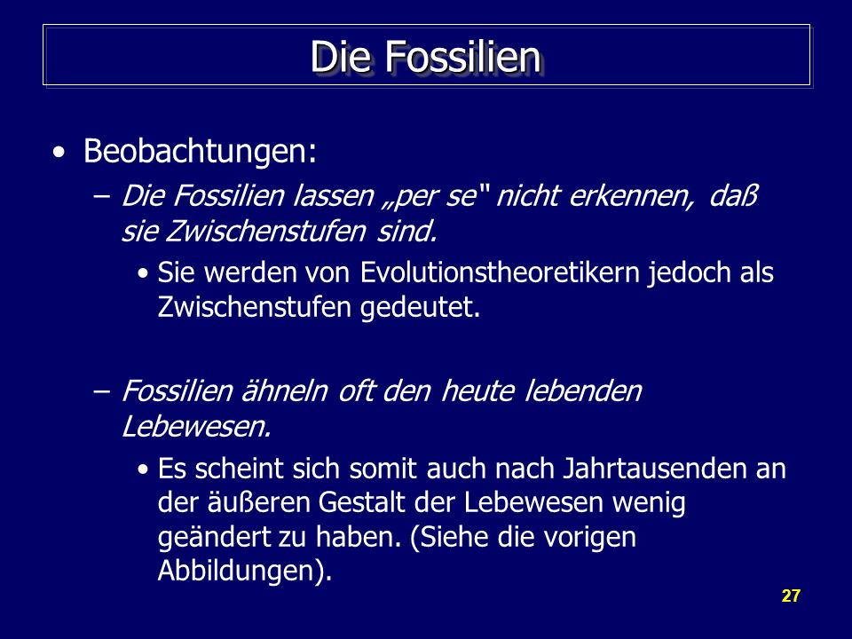 Die Fossilien Beobachtungen: