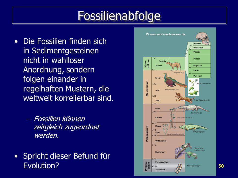 © www.wort-und-wissen.de