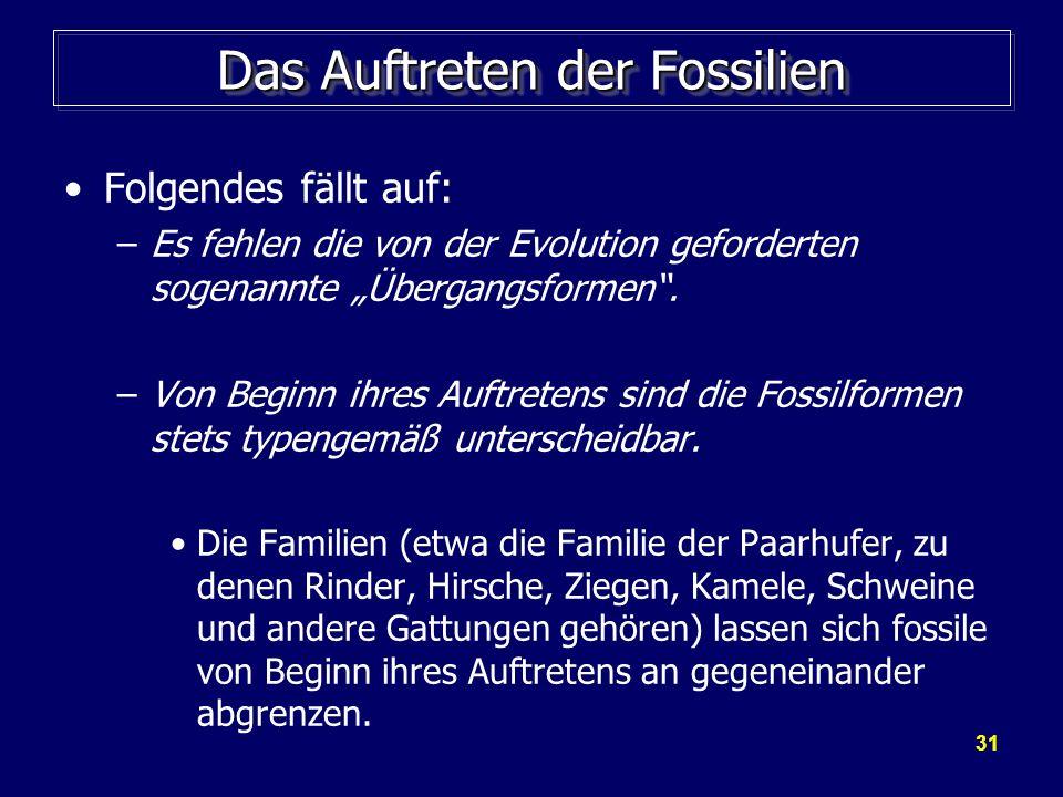 Das Auftreten der Fossilien
