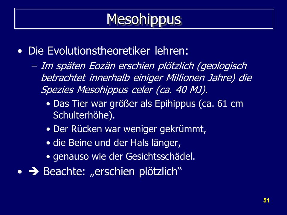 Mesohippus Die Evolutionstheoretiker lehren: