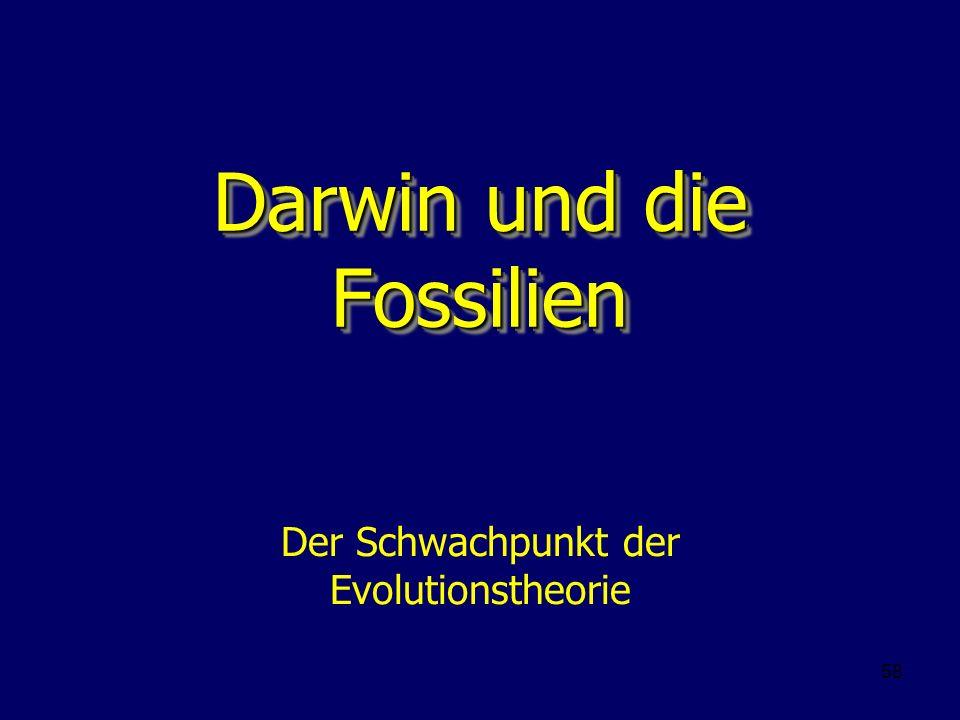 Darwin und die Fossilien