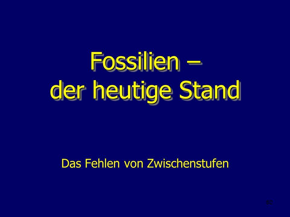 Fossilien – der heutige Stand