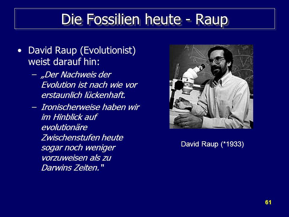 Die Fossilien heute - Raup