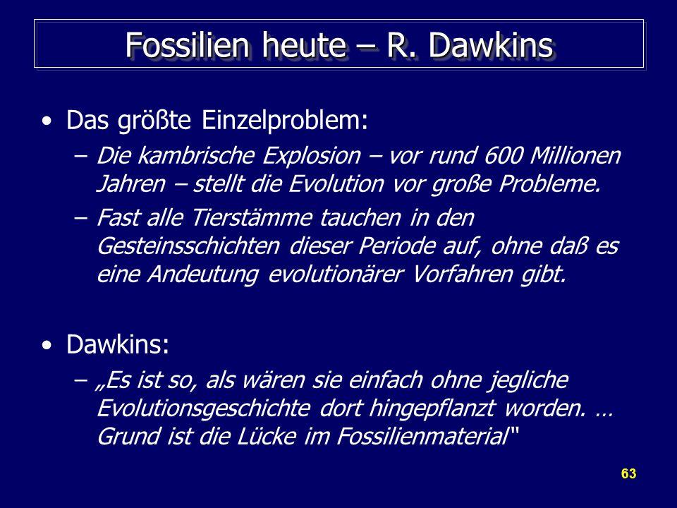 Fossilien heute – R. Dawkins