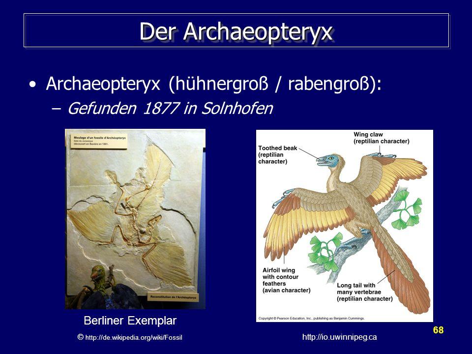 © http://de.wikipedia.org/wiki/Fossil