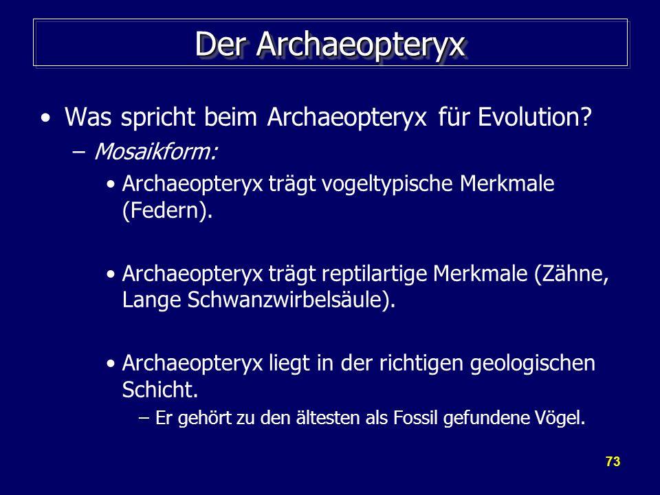 Der Archaeopteryx Was spricht beim Archaeopteryx für Evolution