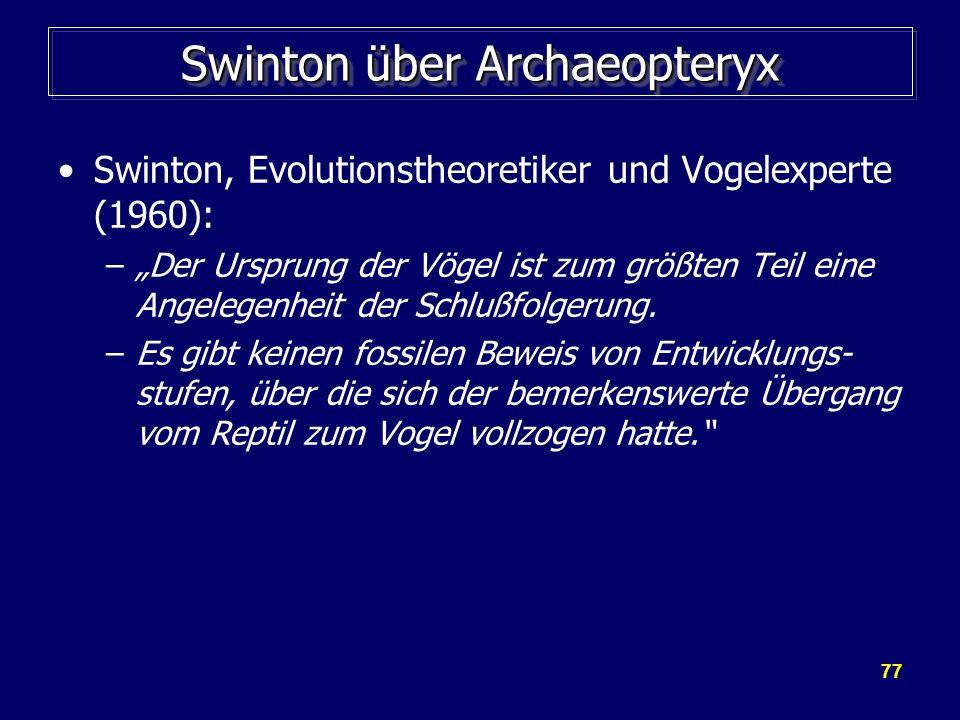 Swinton über Archaeopteryx