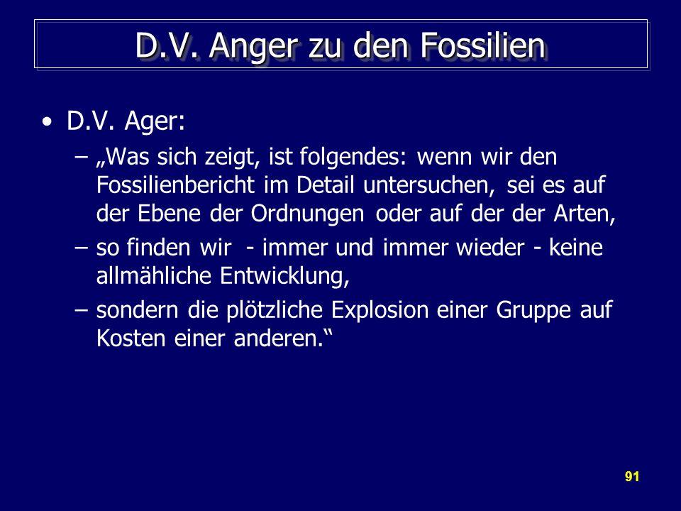 D.V. Anger zu den Fossilien