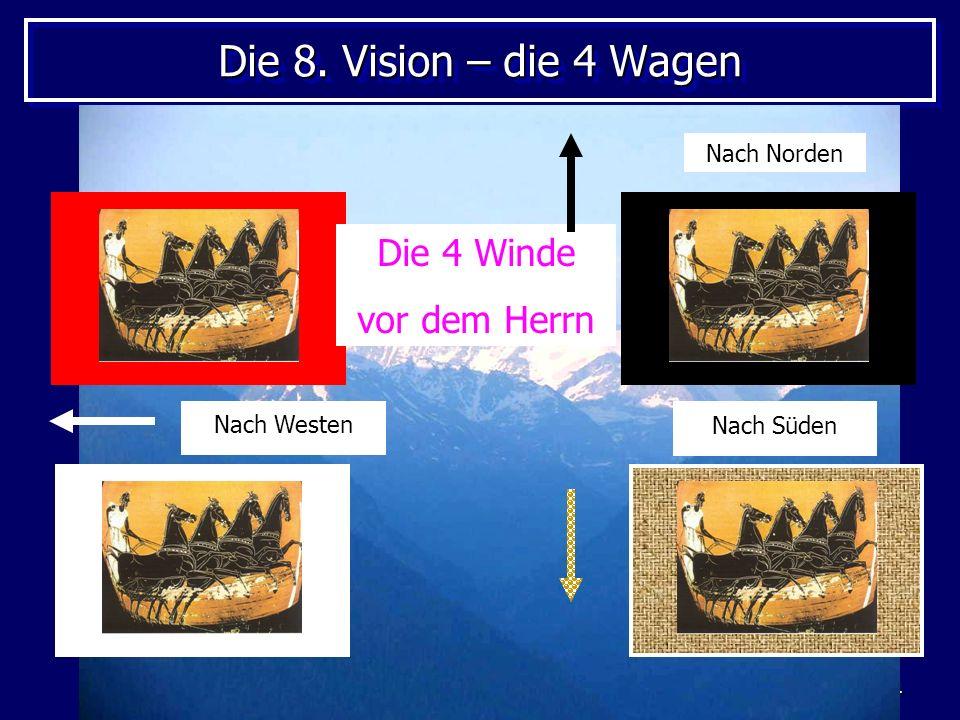 Die 8. Vision – die 4 Wagen Die 4 Winde vor dem Herrn Nach Norden