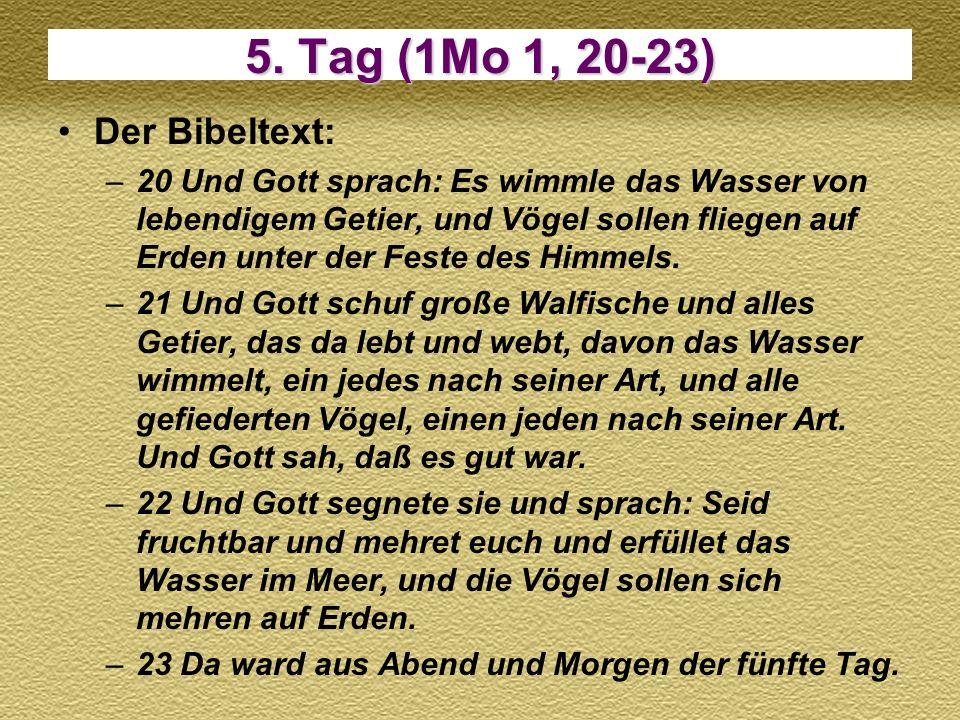 5. Tag (1Mo 1, 20-23) Der Bibeltext: