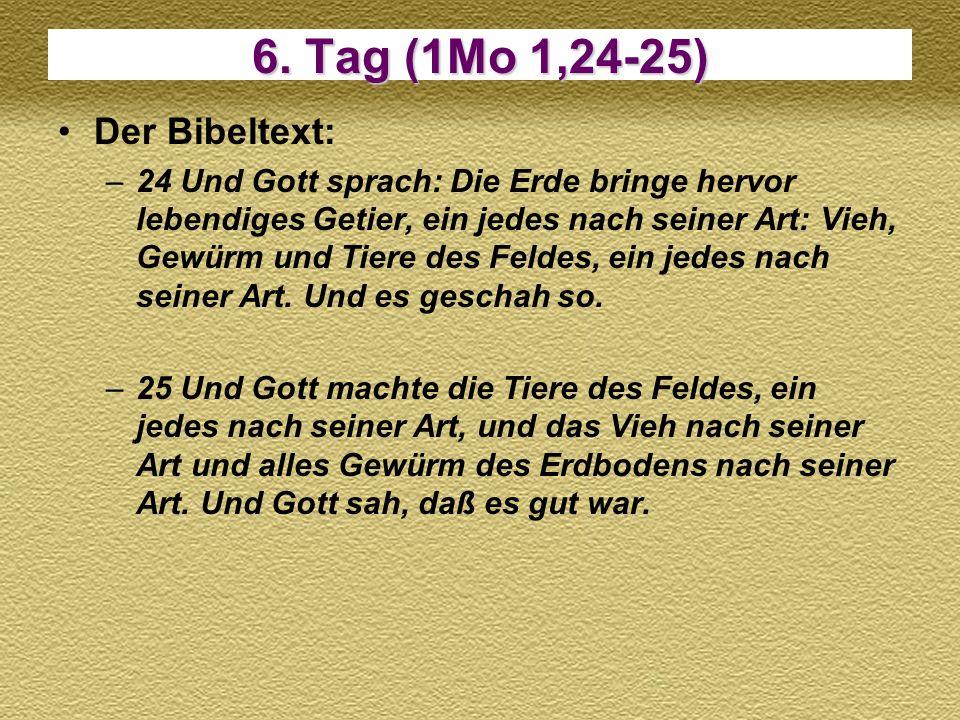 6. Tag (1Mo 1,24-25) Der Bibeltext: