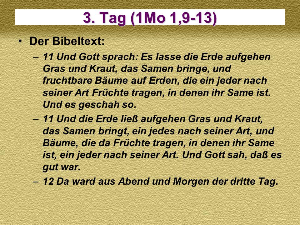 3. Tag (1Mo 1,9-13) Der Bibeltext: