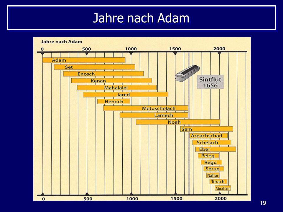 Jahre nach Adam Grafik – Buch: Biblische Alter der Erde