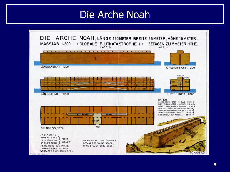 Die Arche Noah http://www.kahal.de/P18-AM-DAN.jpg