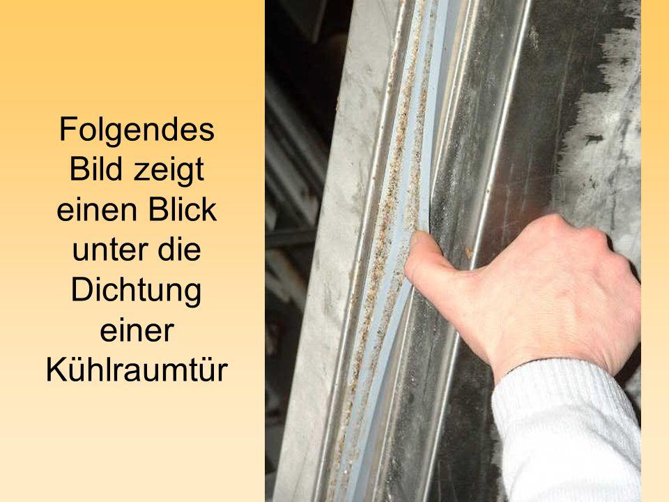 Folgendes Bild zeigt einen Blick unter die Dichtung einer Kühlraumtür
