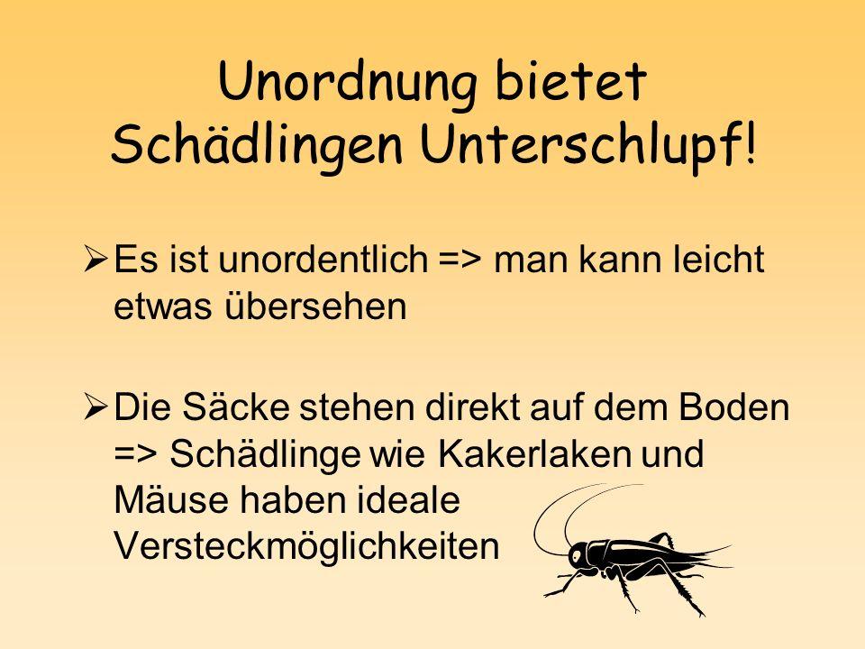 Unordnung bietet Schädlingen Unterschlupf!