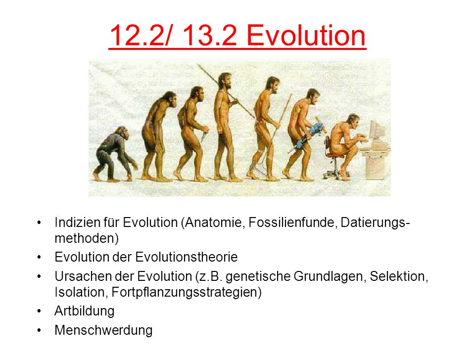 12.2/ 13.2 Evolution Indizien für Evolution (Anatomie, Fossilienfunde, Datierungs-methoden) Evolution der Evolutionstheorie.
