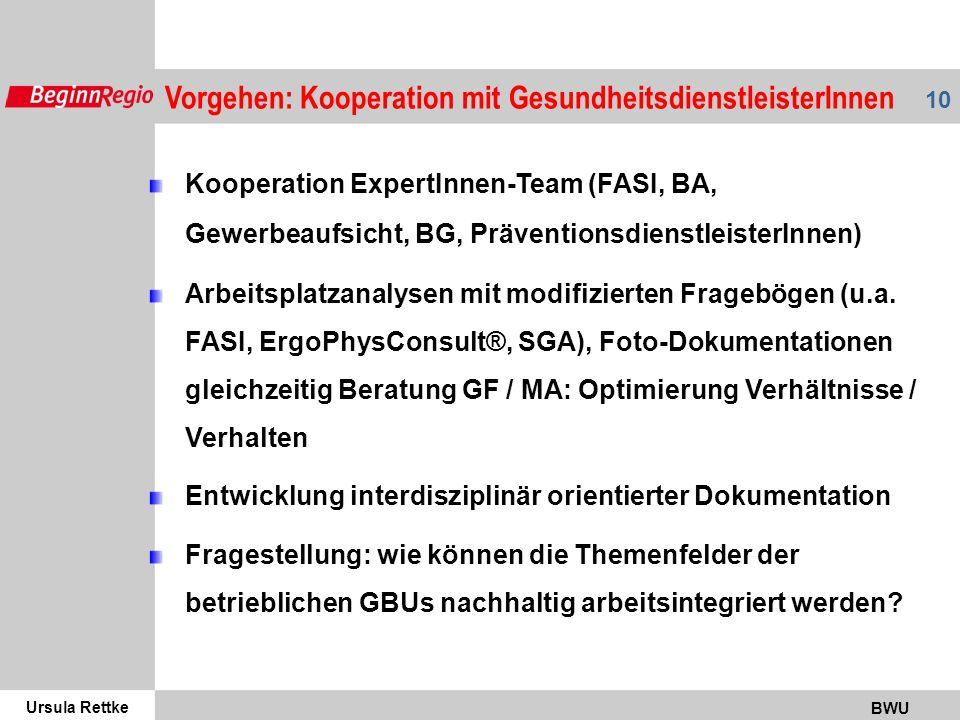 Vorgehen: Kooperation mit GesundheitsdienstleisterInnen
