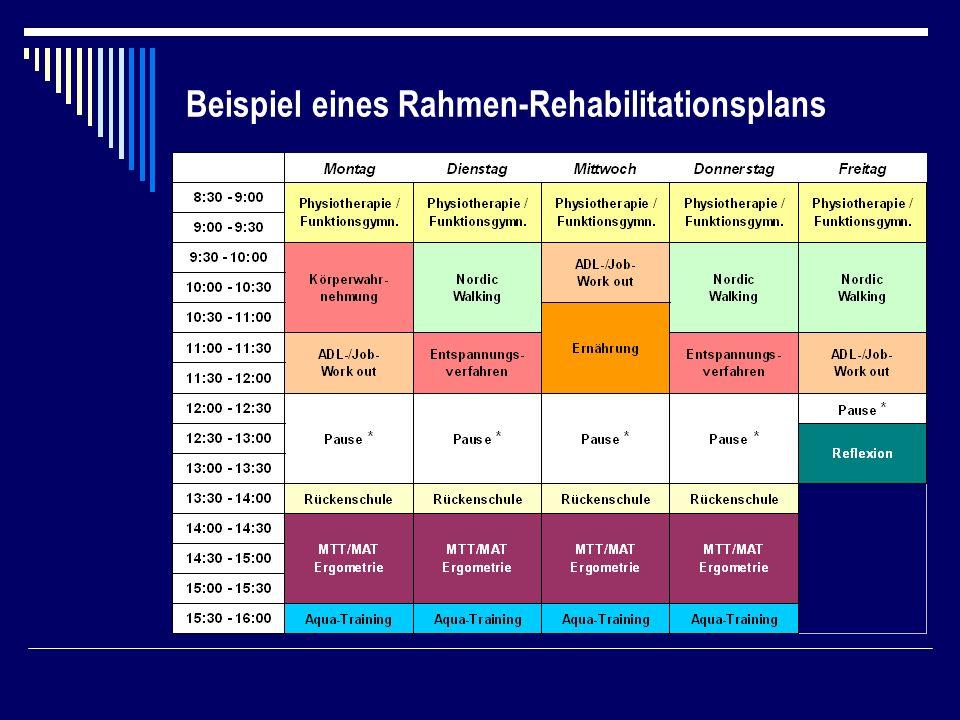Beispiel eines Rahmen-Rehabilitationsplans