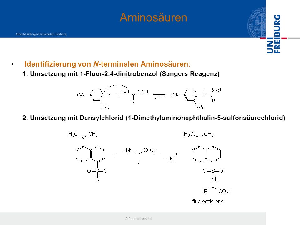 Aminosäuren Identifizierung von N-terminalen Aminosäuren: