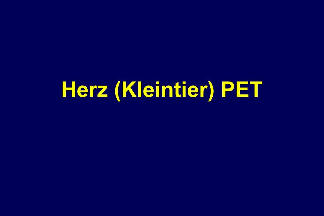 Herz (Kleintier) PET