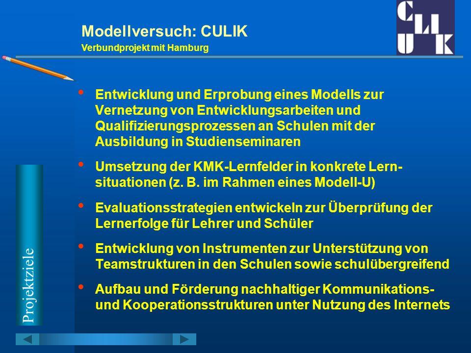 Modellversuch: CULIK Projektziele