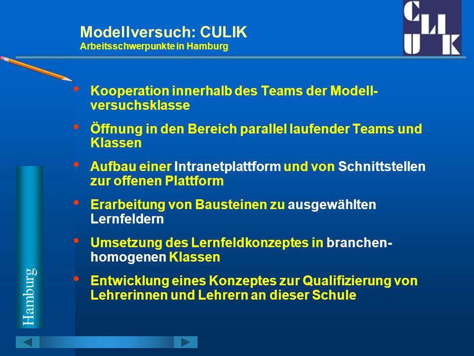 Modellversuch: CULIK Arbeitsschwerpunkte in Hamburg