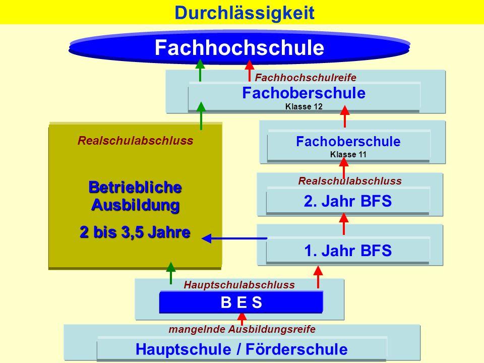 Hauptschule / Förderschule