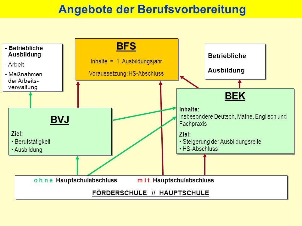 Angebote der Berufsvorbereitung FÖRDERSCHULE // HAUPTSCHULE